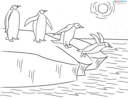 emperor penguin coloring sheet