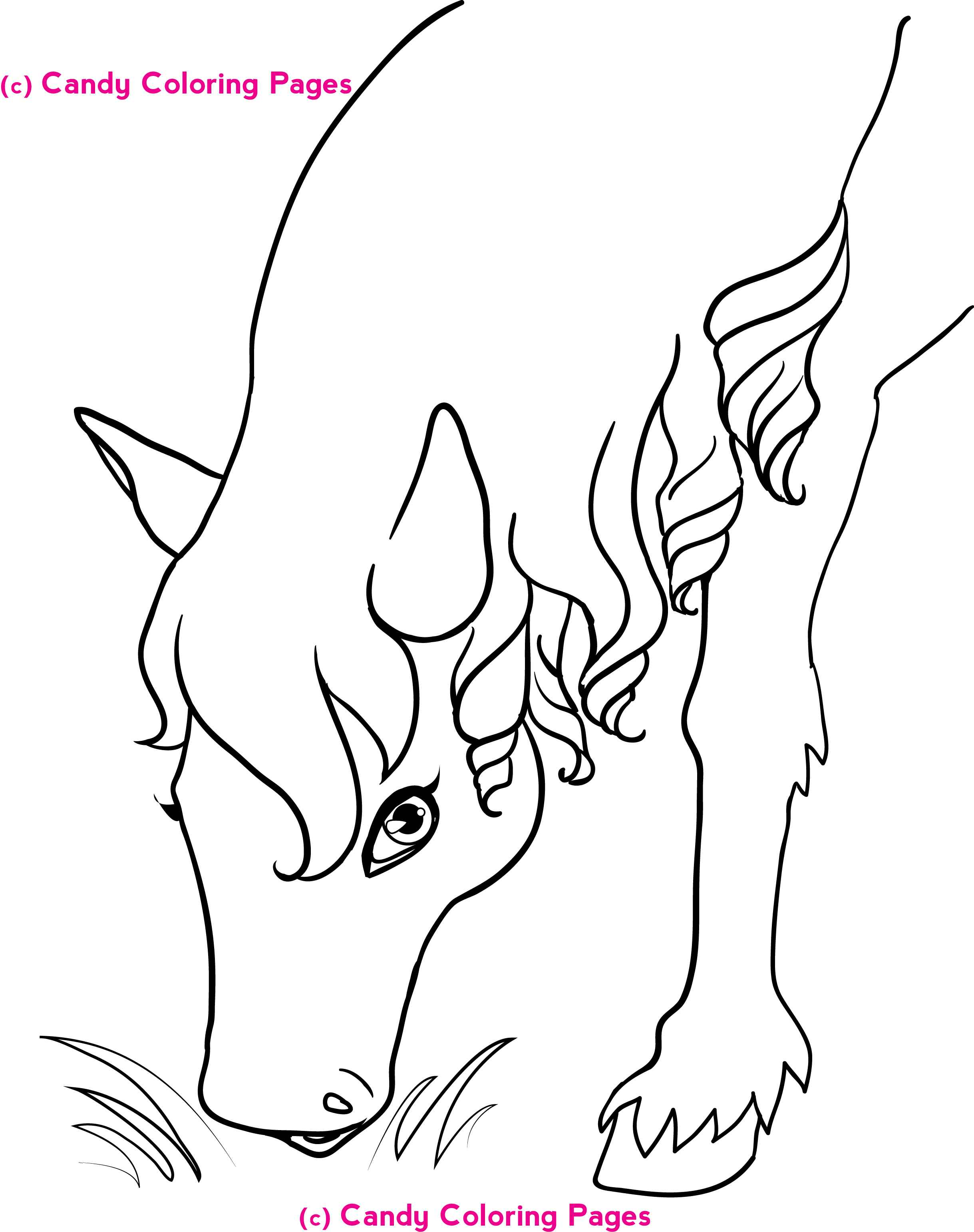 3rd grade math coloring pages2343