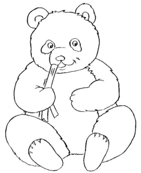 baby panda is eating bamboo coloring page for childrens