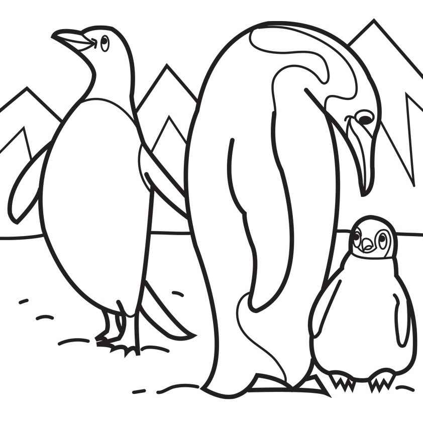 emperor penguin coloring pages printable