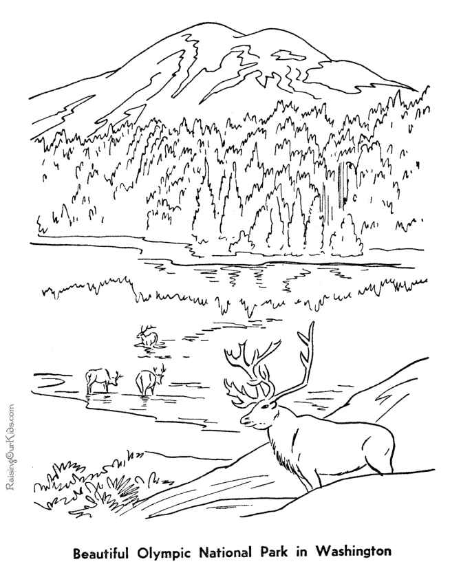olympic national park coloring pages for 5th grade