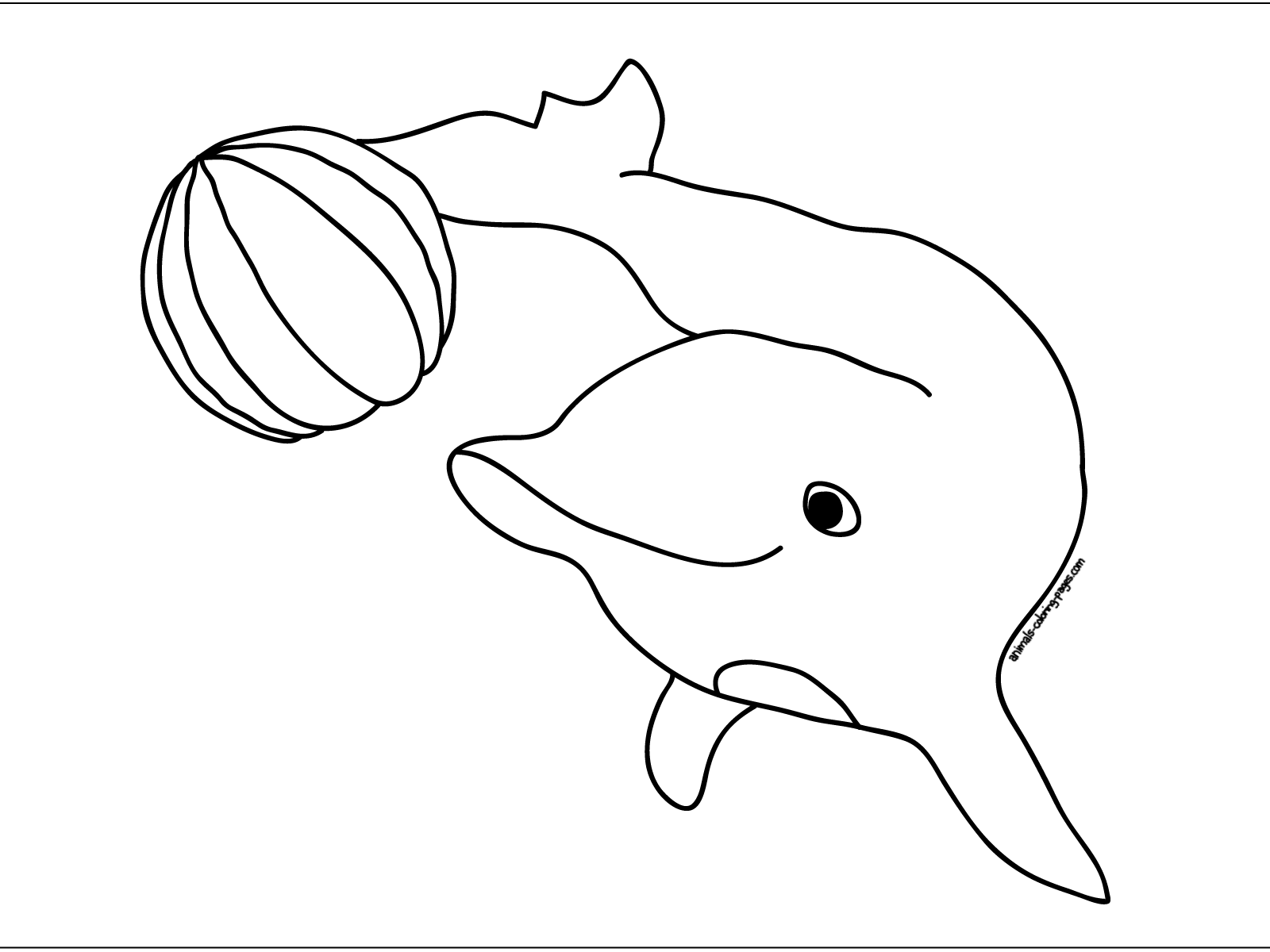 Learn Social Bonds By Dolphins Coloring Pages - Coloring Pages