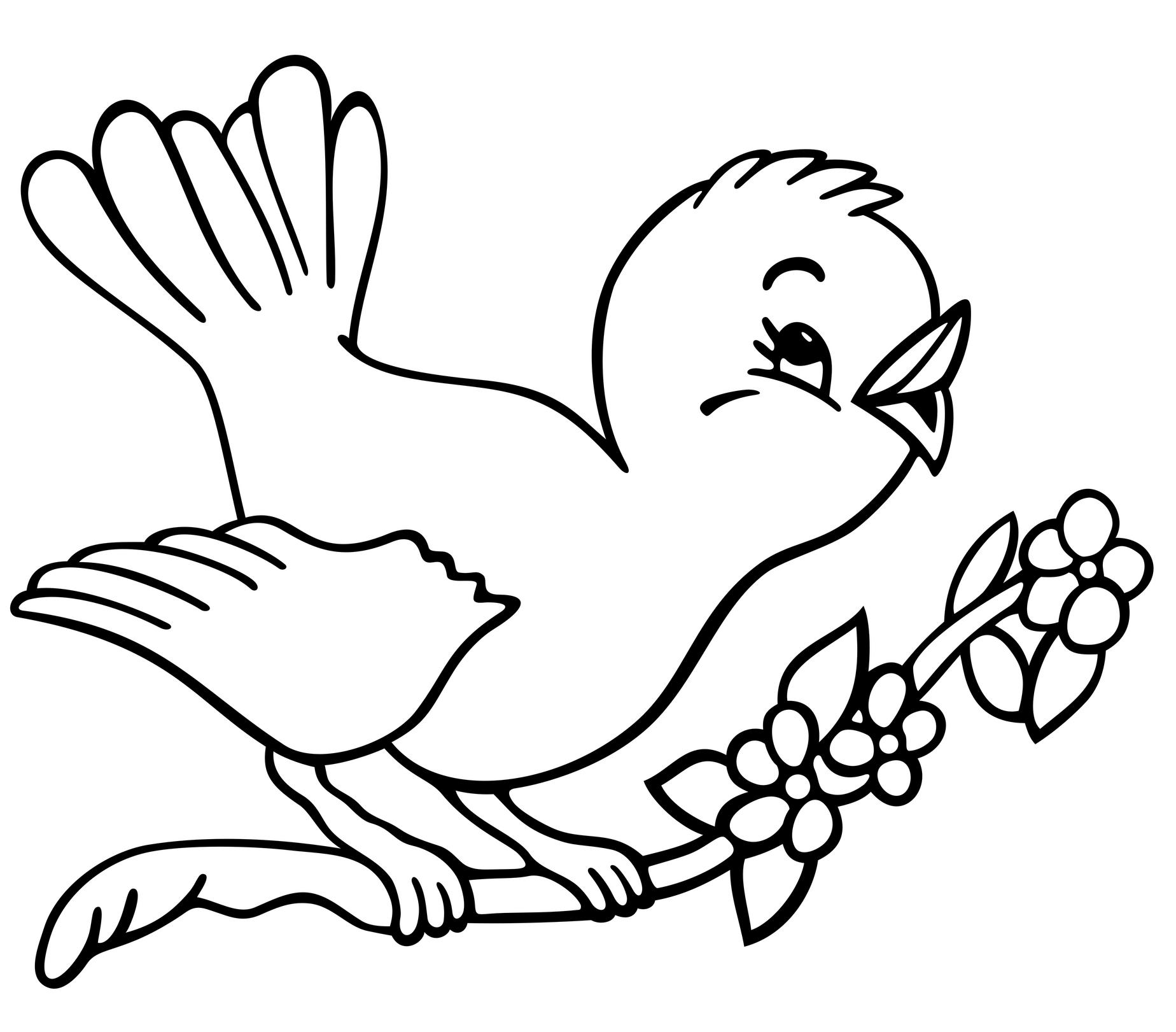 Cuckoo bird coloring pages for Bird coloring pages to print