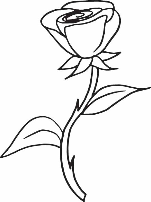 rose coloring pages for girls coloring pages - Rose Coloring Pages