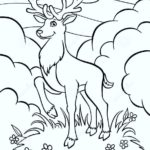 deer-coloring-pages-06