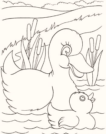 duck-and-duckling-coloring-pages
