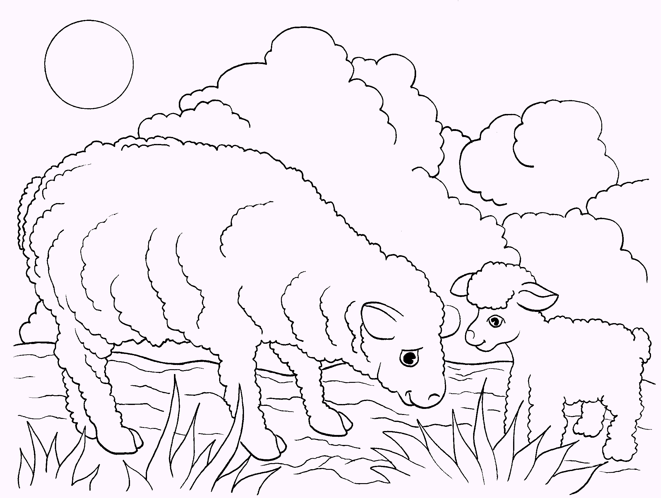 sheep-coloring-pages