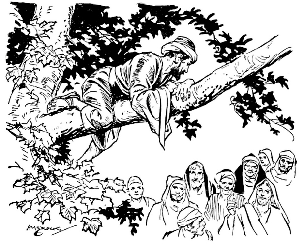 Real-Zacchaeus-climbs-tree-to-see-jesus-coloring-sheet-to-print