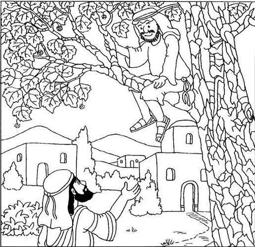 zacchaeus-climbs-tree-to-see-jesus-picture-printable