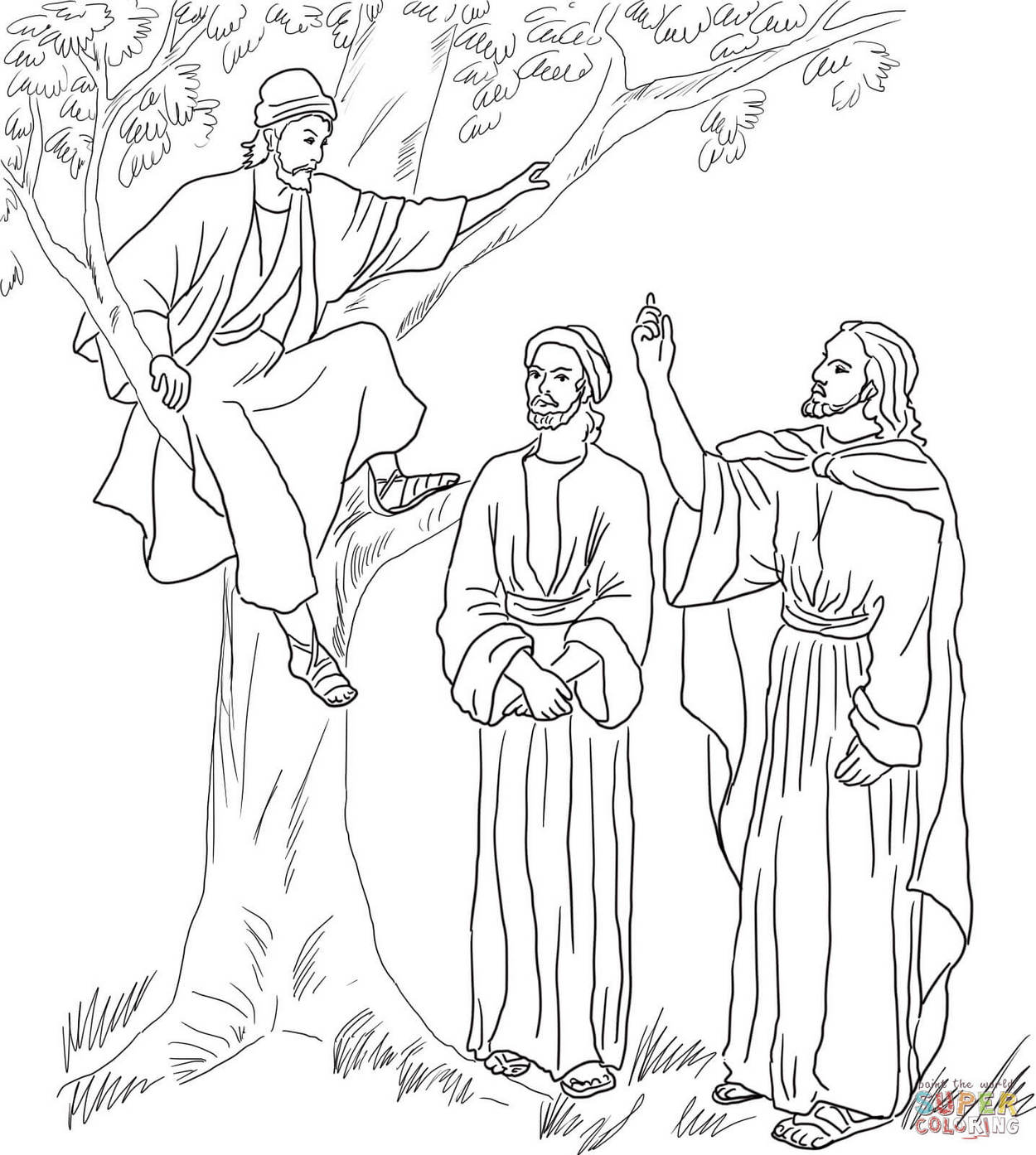 zacchaeus-tree-coloring-page-printable