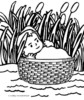 The Best Collection of Baby Moses Colouring Pages
