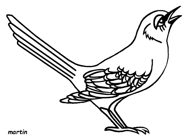 Florida Mockingbird Coloring Pages