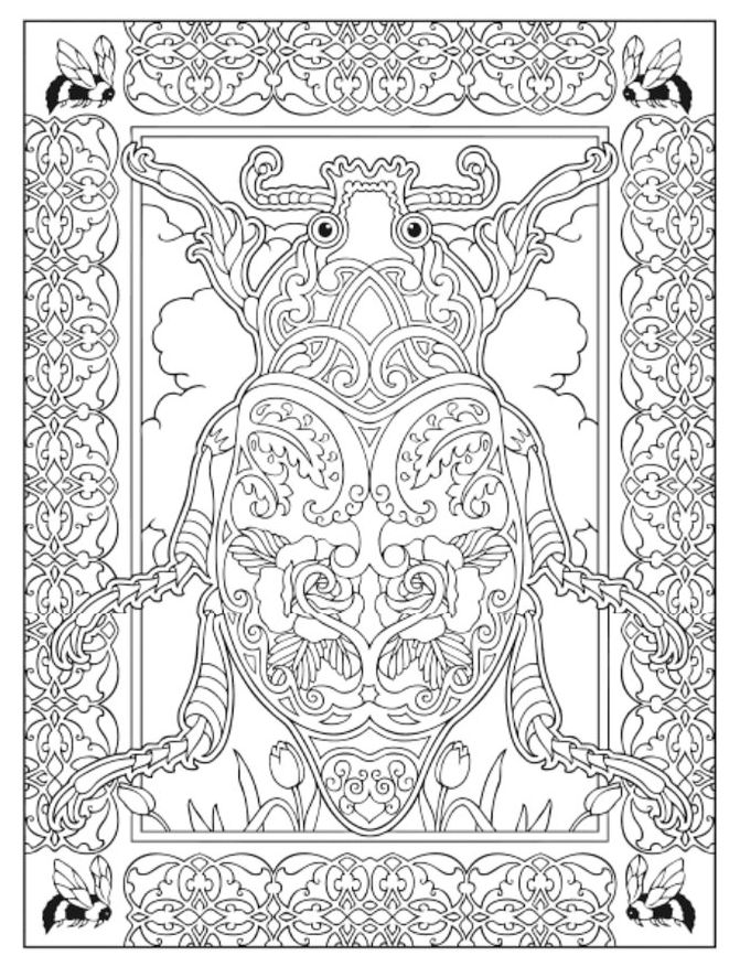 insect-mandala-colouring-sheet