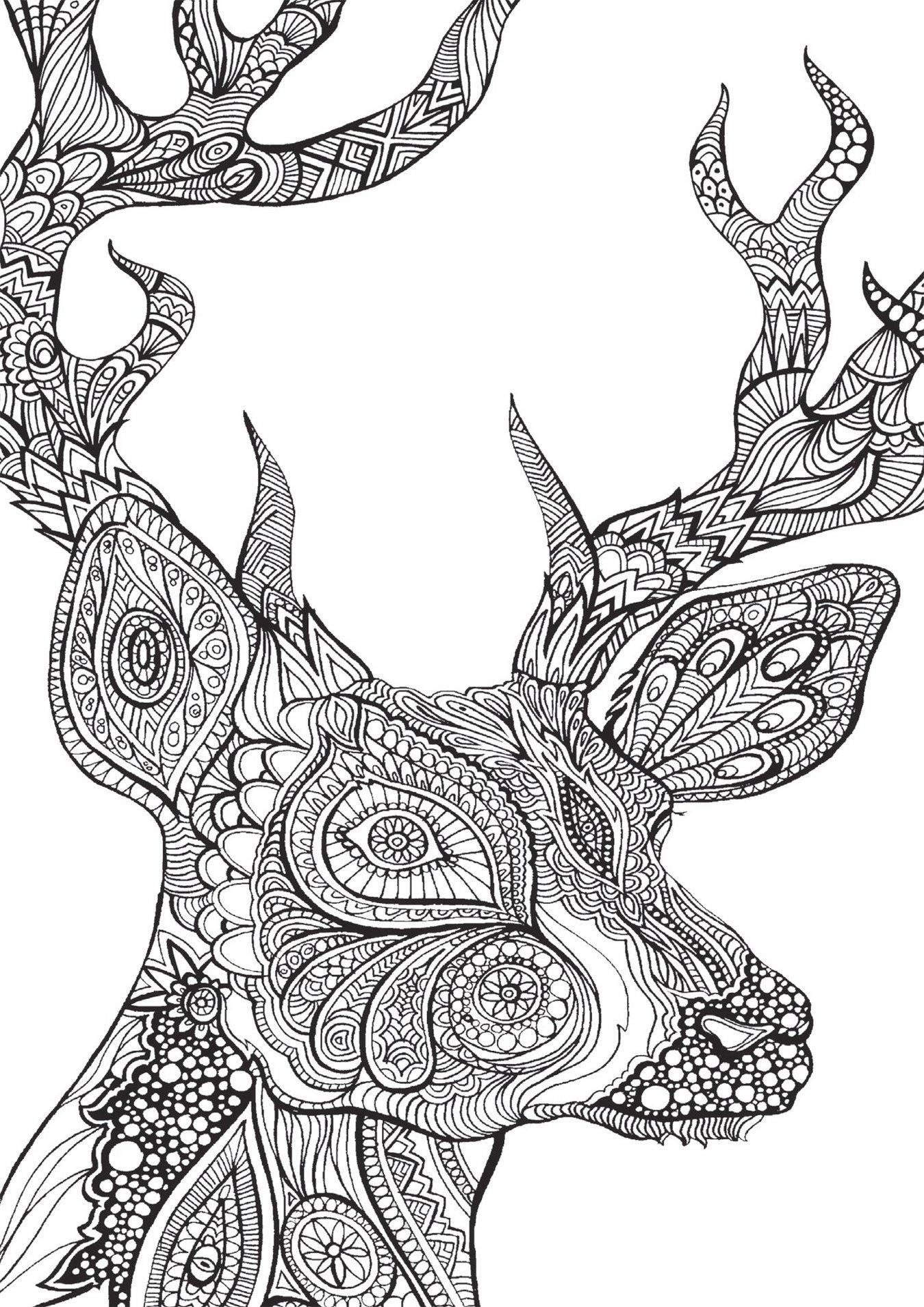 Bestiaire-extraordinaire-deer-by-Hannah-Davies
