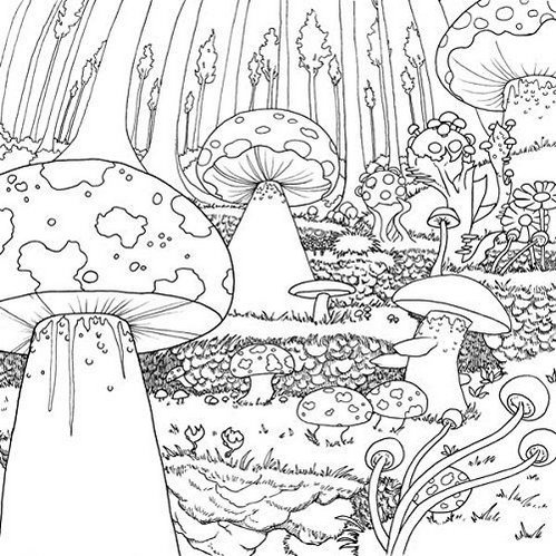 Legendary-Landscapes-Coloring-Book-Forests