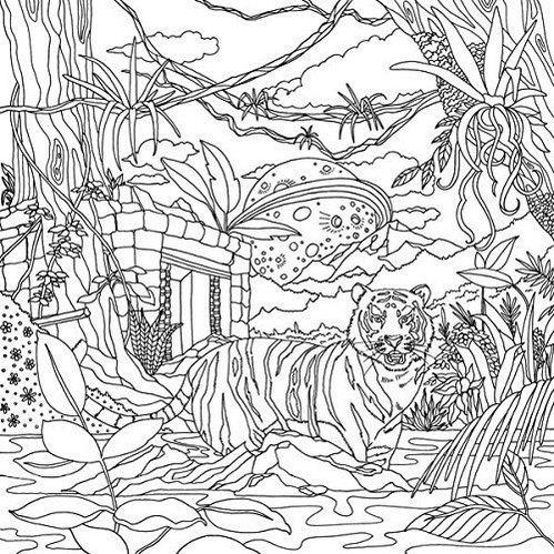 Legendary-Landscapes-Coloring-Book-Woodlands