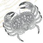 The Aquarium Marine Portraits Coloring Book Crab