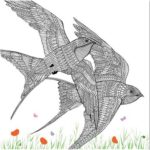 The-Aviary-Bird-Portraits-coloring-book-swallows