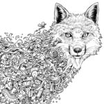 animorphia-fox-coloring-book