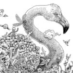 animorphia-swan-coloring-book