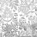 beautiful-enchanted-forest-coloring-book