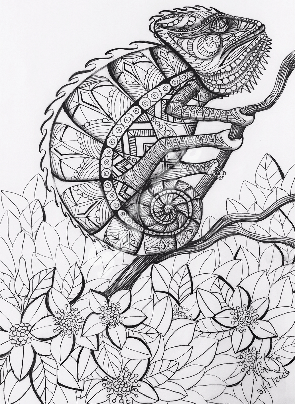 colour-my-dreams-coloring-book-chameleon