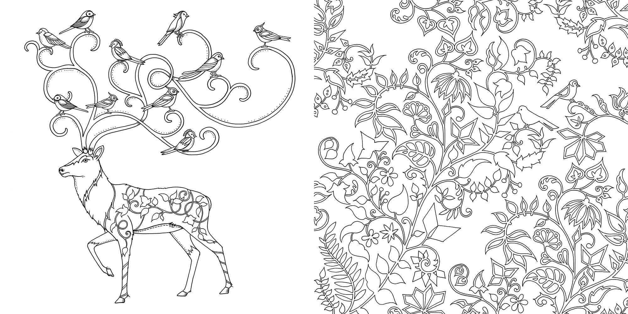 enchanted-forest-coloring-sheet