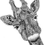 giraffe-mandala-coloring-sheet