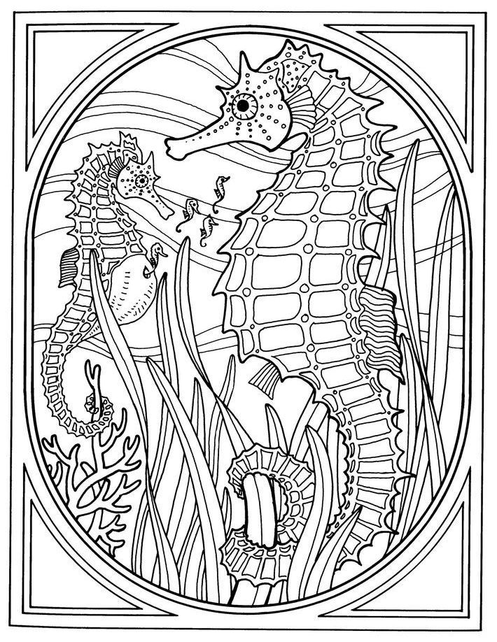 two-seahorses-print-out-drawing