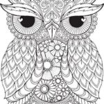 owl-mandala-coloring-book