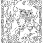 twin-owls-mandala-coloring-page
