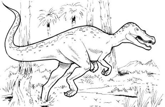 Tryannosaurus Rex T Rex Coloring Page Printable