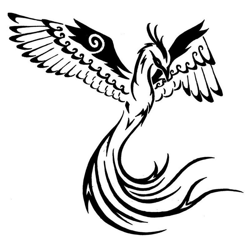 Tribal Phoenix Bird Drawing