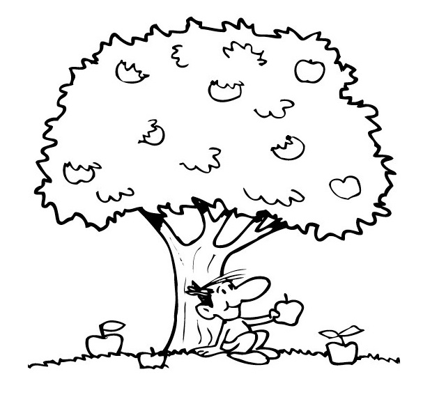 Apple Tree Coloring Page Printable