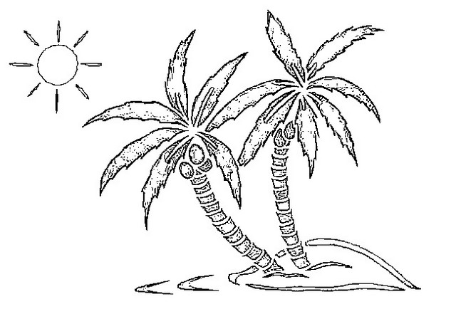palm tree tropical world coloring page