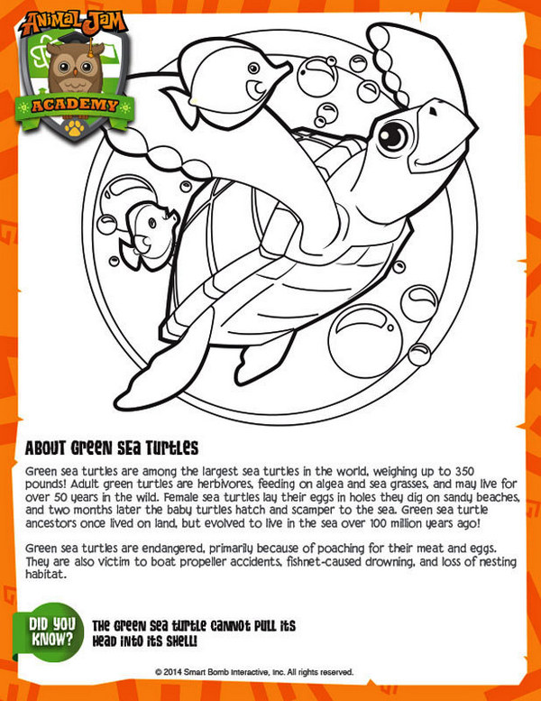 Green sea turtles animal jam coloring sheet