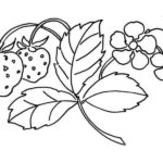 Strawberry and leaves coloring page