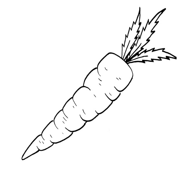 carrot coloring sheet to print