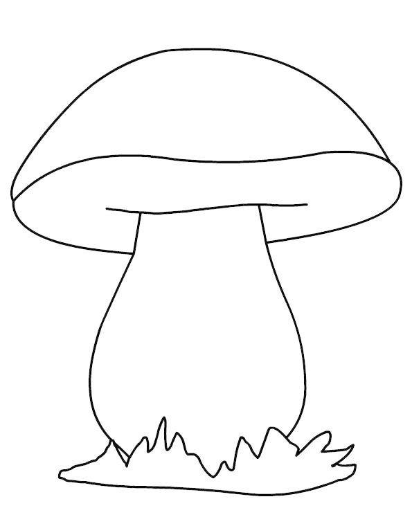 mushroom coloring and drawing sheet