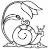 A Tiny and Slow Animal, Snail Coloring Pages