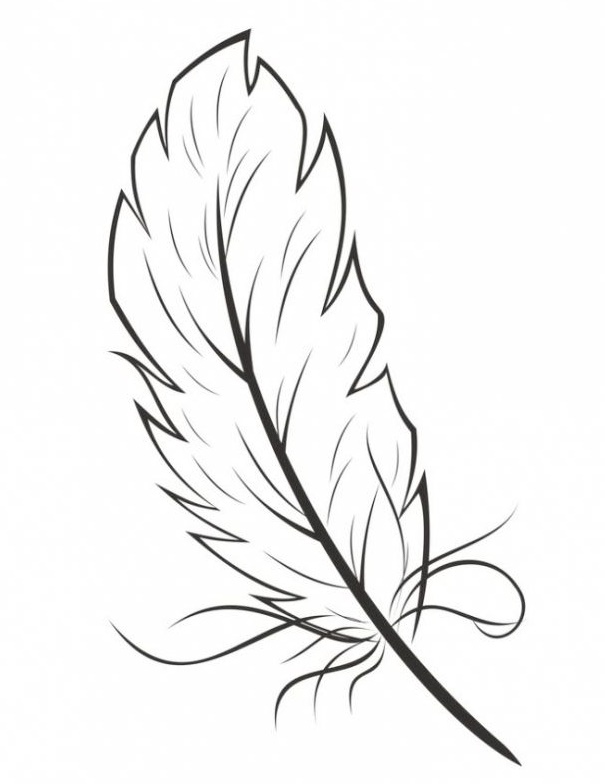 eagle bird feather coloring sheet