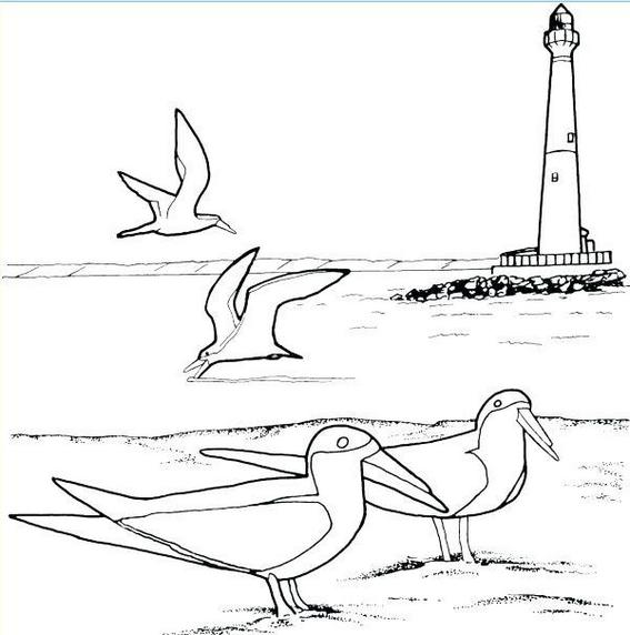 lighthouse coloring page ocean coloring book