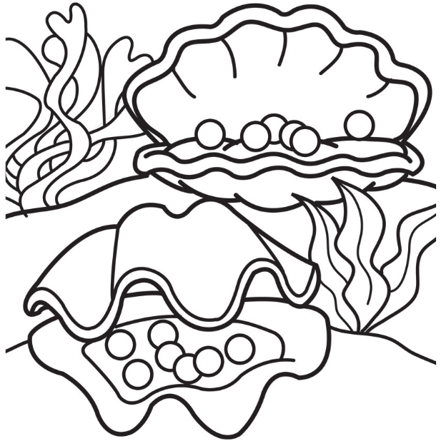 pearls within shell coloring picture