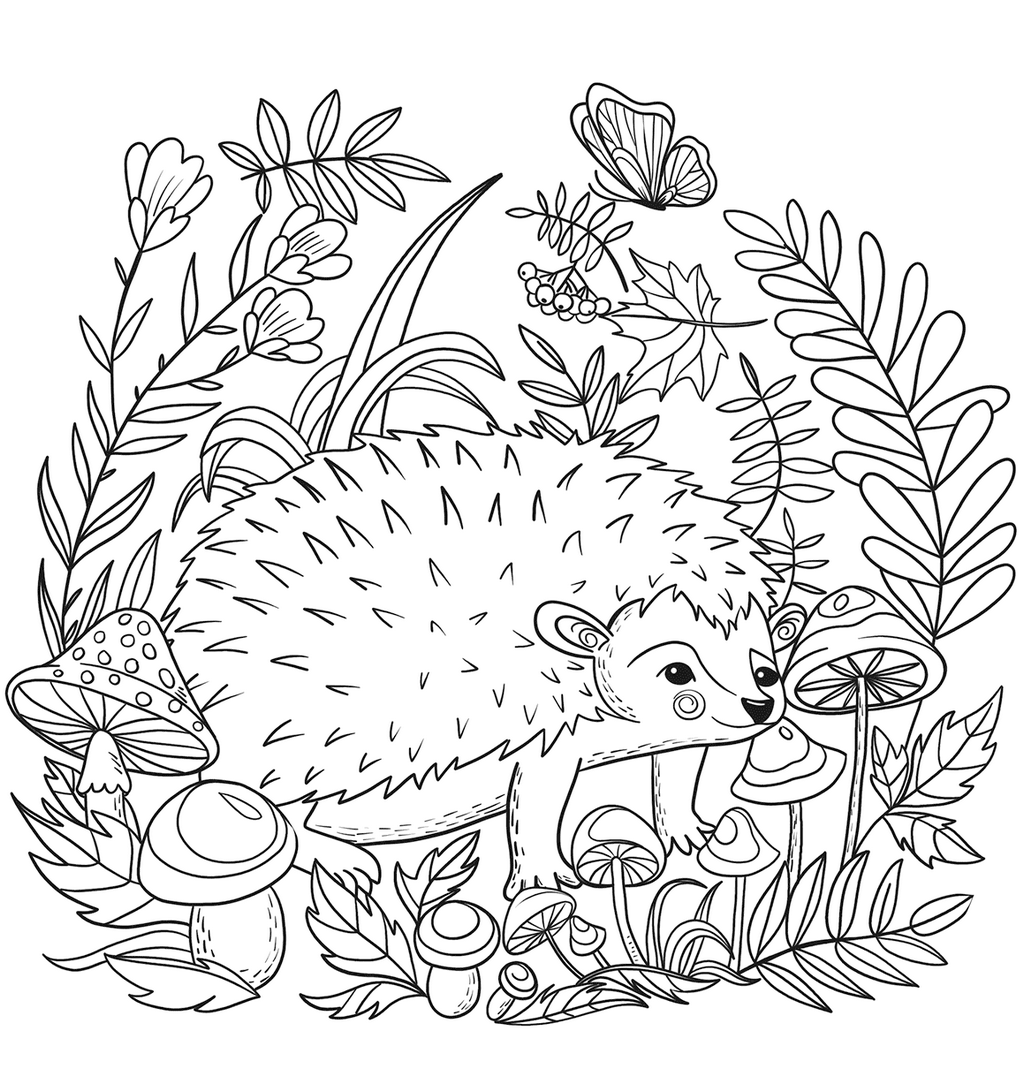 realistic hedgehog coloring picture