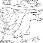 sea otter with undersea scenery coloring page