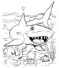 Top 25 of Fascinating Shark Species Coloring Pages