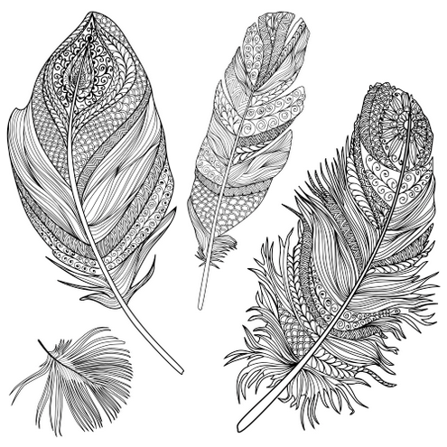 various of feathers coloring pictures