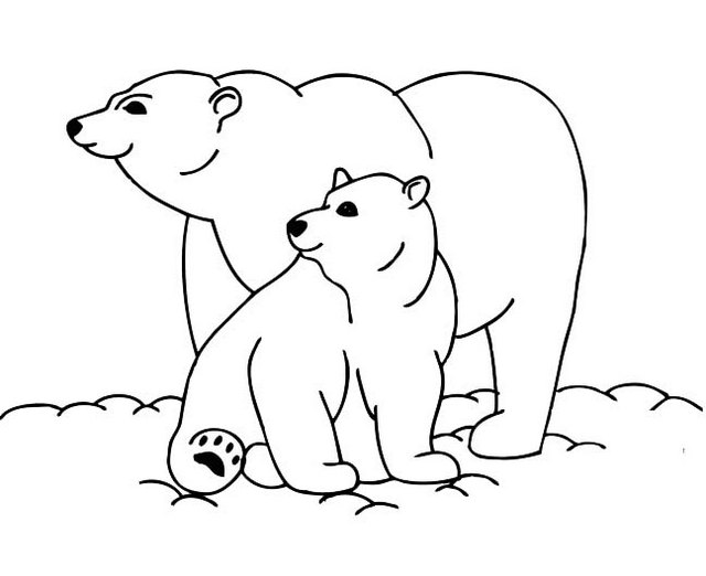 Epic Polar Bear Information and Facts Coloring Pages