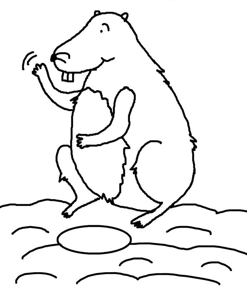 best groundhog day cartoon coloring sheets