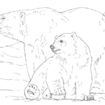 realistic giant polar bear coloring pages for small children